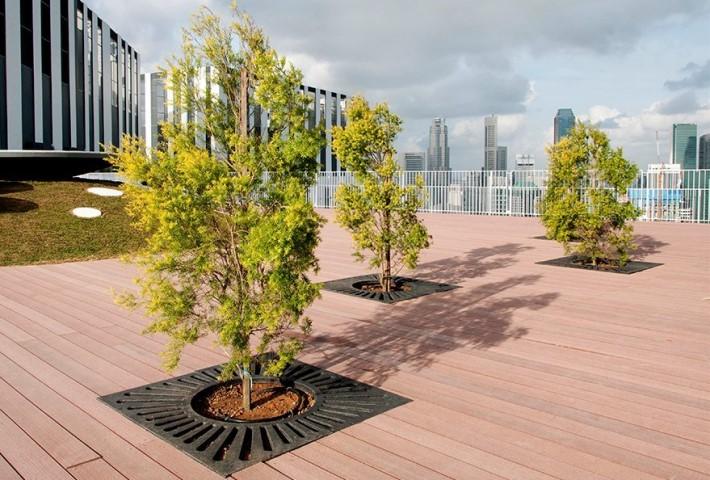 HBD Tree Grates