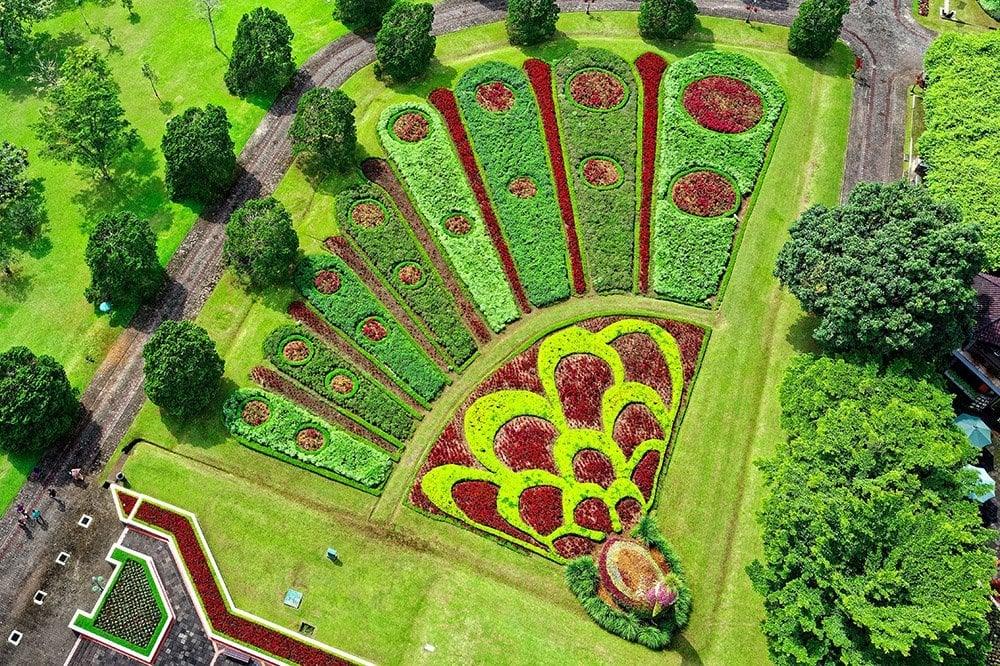 Peacock Landscape Design