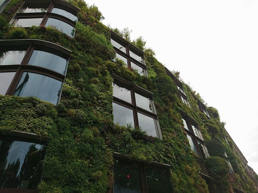vertical garden around exterior of building