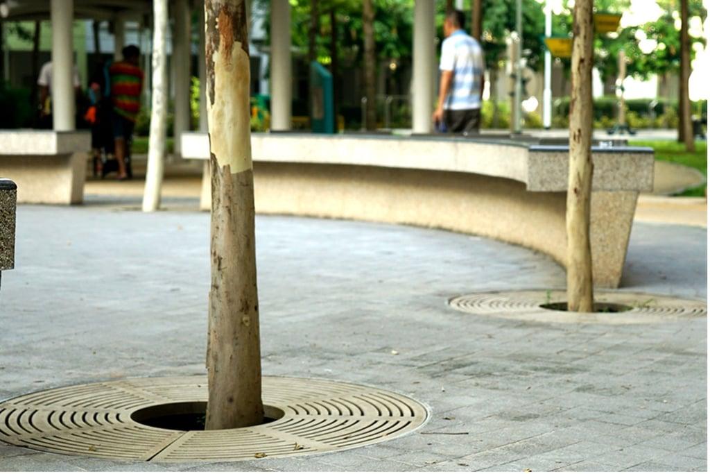 Treelined hardscape